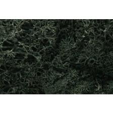 "Woodland Scenics L164 - Lichen ""Dark Green"""