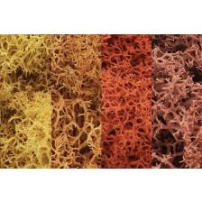 "Woodland Scenics L165 - Lichen ""Autumn Mix"""