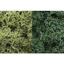 """Woodland Scenics L167 - Lichen """"Light Green Mix"""""""