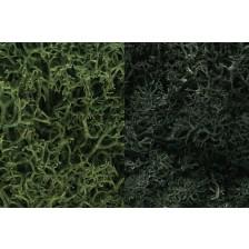 "Woodland Scenics L168 - Lichen ""Dark Green Mix"""